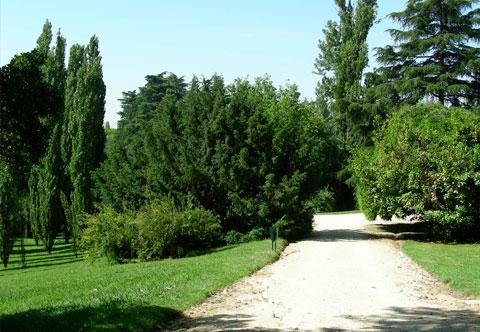 Parque del Oeste -Madrid-
